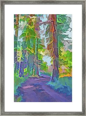 Forest Road - Color Splash 4 Framed Print by Steve Ohlsen