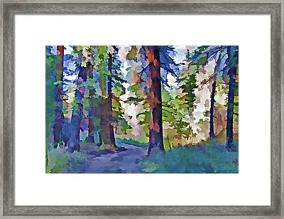 Forest Road - Color Splash Framed Print by Steve Ohlsen