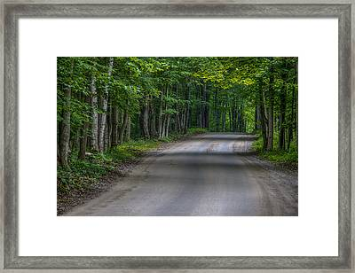 Forest Road Framed Print by Sebastian Musial
