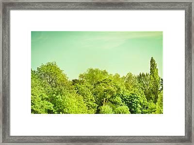 Forest Framed Print by Tom Gowanlock
