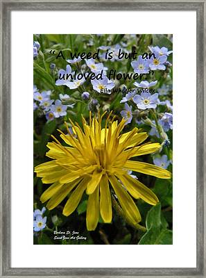 Forget Me Not Framed Print by Barbara St Jean