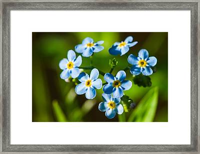 Forget You Never - Featured 3 Framed Print by Alexander Senin
