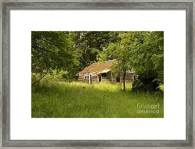 Forgotten But Not Gone Framed Print by Sean Griffin