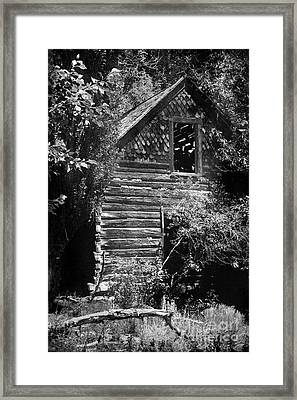 Forgotten Log Cabin Framed Print by Cindy Singleton