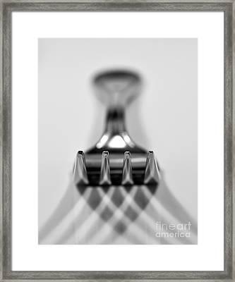 Fork Framed Print by Douglas Stucky