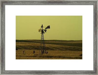 Forlorn Framed Print by Jeff Swan
