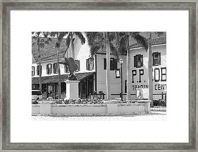 Fort Pierce Florida Framed Print by Don Youngclaus