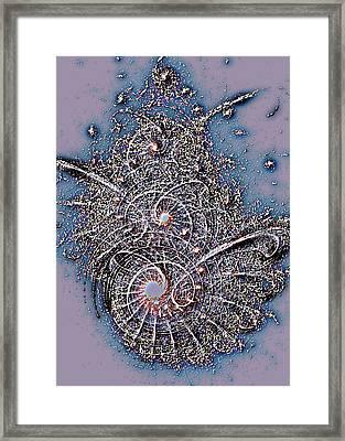 Fossil Framed Print by Anastasiya Malakhova