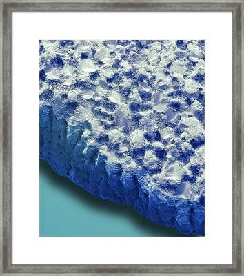 Fossil Dinosaur Eggshell Framed Print by Steve Gschmeissner