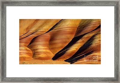 Fossilscape Framed Print by Inge Johnsson