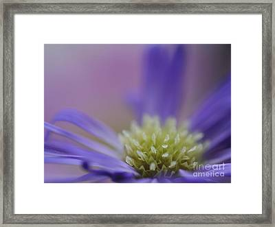 Fountain Of Joy Framed Print by Irina Wardas