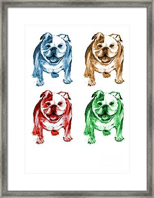 Four Bulldogs Framed Print by Barbara Marcus