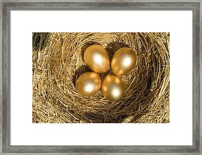 Four Golden Eggs In A Nest Framed Print by Ashley Cooper