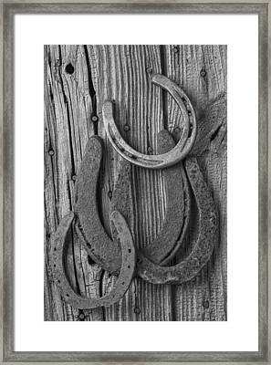 Four Horseshoes Framed Print by Garry Gay