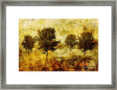 Four Trees Framed Print by John Edwards