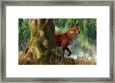 Fox In A Forest Framed Print by Daniel Eskridge