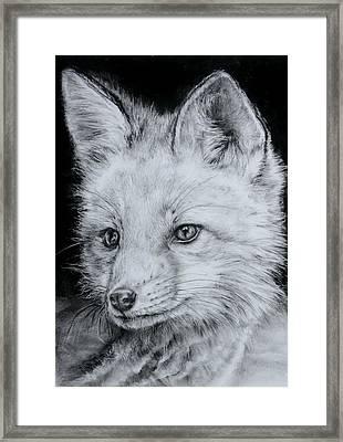 Fox Kit Framed Print by Jean Cormier