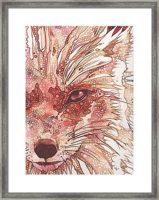 Fox Framed Print by Tamara Phillips