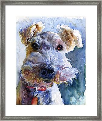 Fox Terrier Full Framed Print by John D Benson