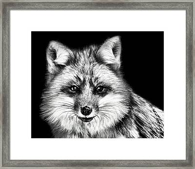 Foxtrot Framed Print by Steven Richardson