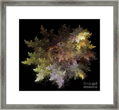 Fractal Flames Framed Print by Scott Camazine