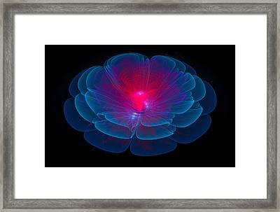 Fractal Flower Blue And Red Framed Print by Matthias Hauser