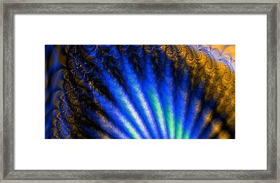 Fractal Shell Framed Print by Ian Mitchell