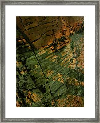 Fragility Framed Print by Guy Ricketts