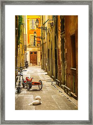 France - Nice - The Little Things Framed Print by Vivienne Gucwa