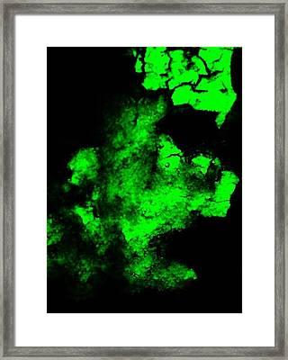 Frank II Framed Print by Danny Killian
