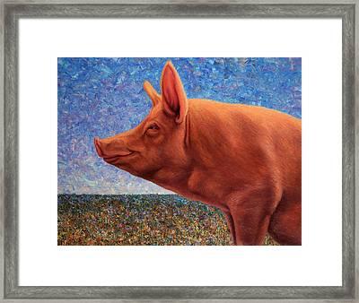 Free Range Pig Framed Print by James W Johnson