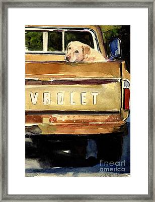Free Ride Framed Print by Molly Poole