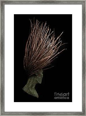 Freedom Framed Print by Adam Long