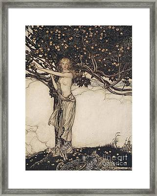 Freia The Fair One Illustration From The Rhinegold And The Valkyrie Framed Print by Arthur Rackham