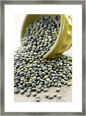 French Lentils Framed Print by Elena Elisseeva