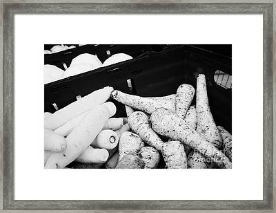 Fresh Carrots And Parships Outside A Greengrocers Shop In The Uk Framed Print by Joe Fox