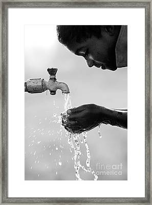Fresh Clean Water Framed Print by Tim Gainey
