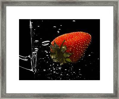 Fresh Framed Print by Damian Morphou