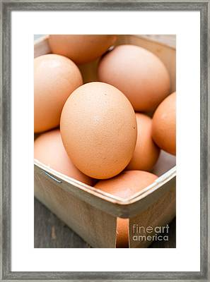 Eat Free Framed Print featuring the photograph Fresh Eggs by Edward Fielding