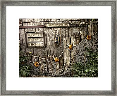 Fresh Fish Framed Print by Peggy Hughes