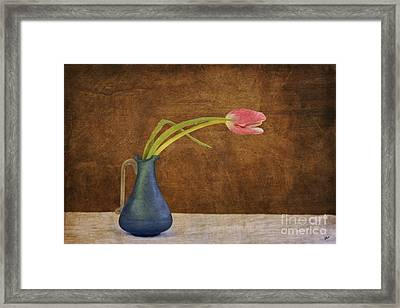 Fresh From The Garden Framed Print by Alana Ranney