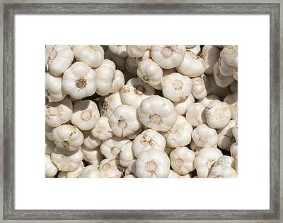 Fresh Garlic Framed Print by Mike  Dawson