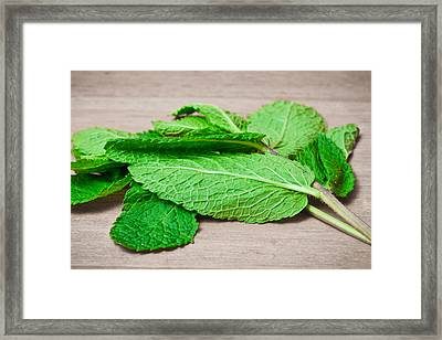 Fresh Mint Framed Print by Tom Gowanlock