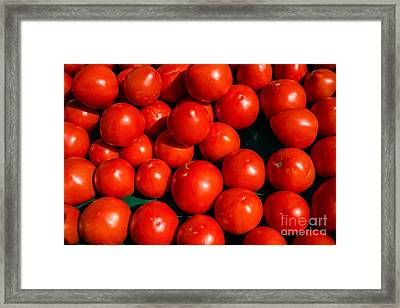 Fresh Ripe Red Tomatoes Framed Print by Edward Fielding