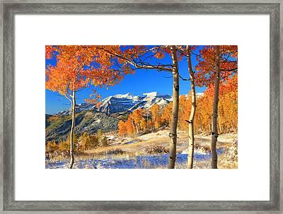 Fresh Snow In The Aspens. Framed Print by Johnny Adolphson