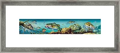 Freshwater Lake Scene Framed Print by Jon Q Wright