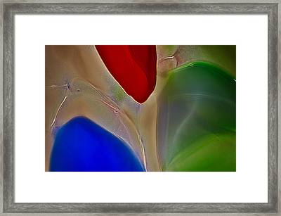 Friendly Fish Framed Print by Omaste Witkowski