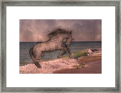 Friends Framed Print by Betsy C Knapp