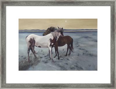 Friends Framed Print by Glenda Stevens