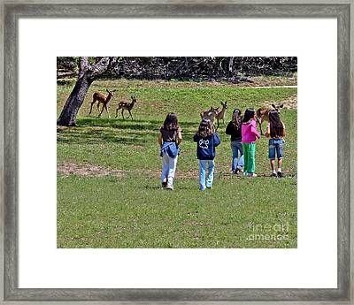 Friends Making Friends Framed Print by Bob and Nadine Johnston
